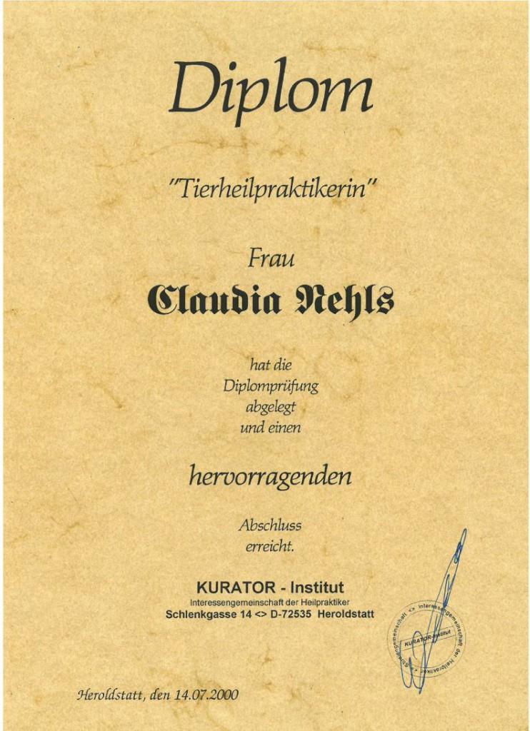 Urkunde THP