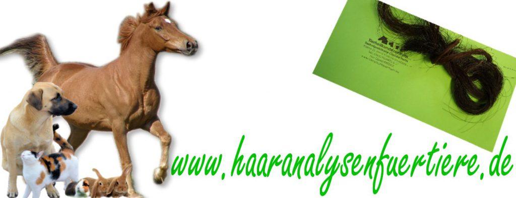 Haaranalyse für Tiere