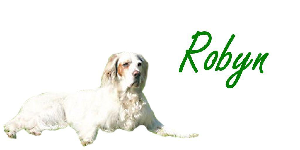 Robyn frei