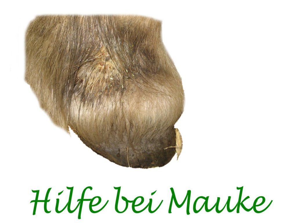 Mauke Blog